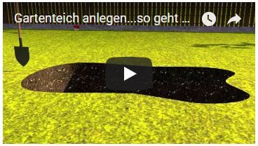 Video Gartenteich anlegen