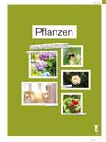 Pflanzen 2016