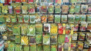 Saatgut für Gemüse und Blumen
